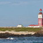 Ga mee op een boot cruise naar Bird Island