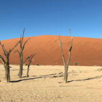 Dunes and sand in the Sossusvlei