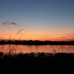 Two Lovely Campsites at the Okavango river