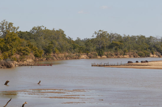 North Luangwa