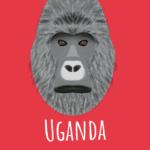 Ochtendfoto's van Oeganda