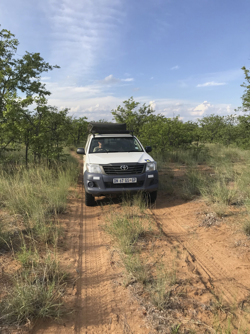 What do you need to bring on a self drive safari? » Go