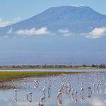 Stunning views of Amboseli National Park