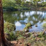 Tsavo West National Park Video